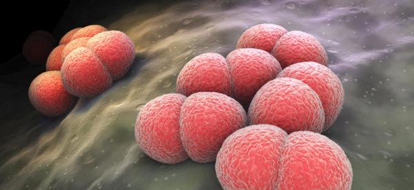 Meningite: l'essenziale per proteggersi